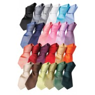 Fashion Tie selection